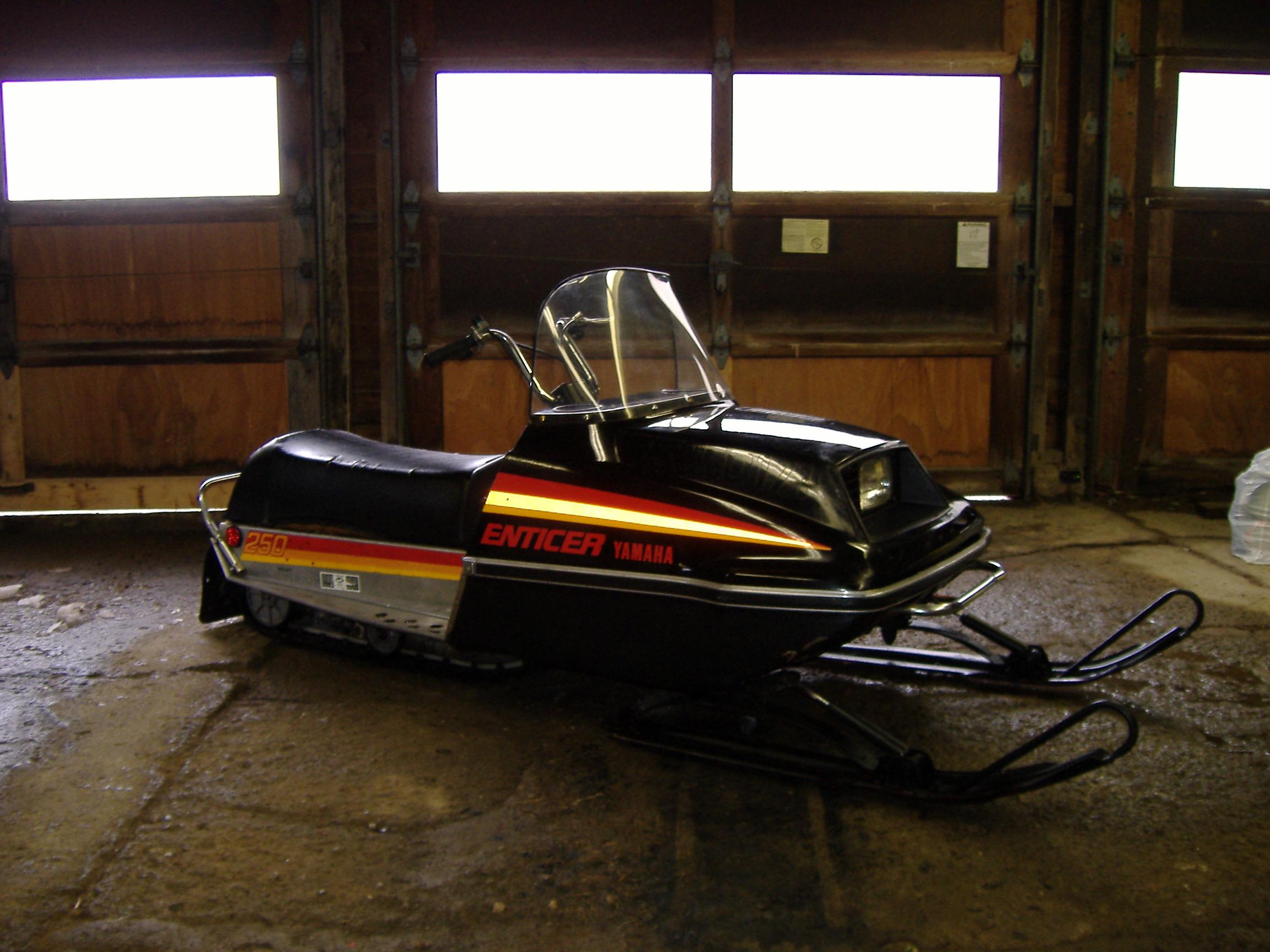 For Sale 1980 Yamaha Enticer 250