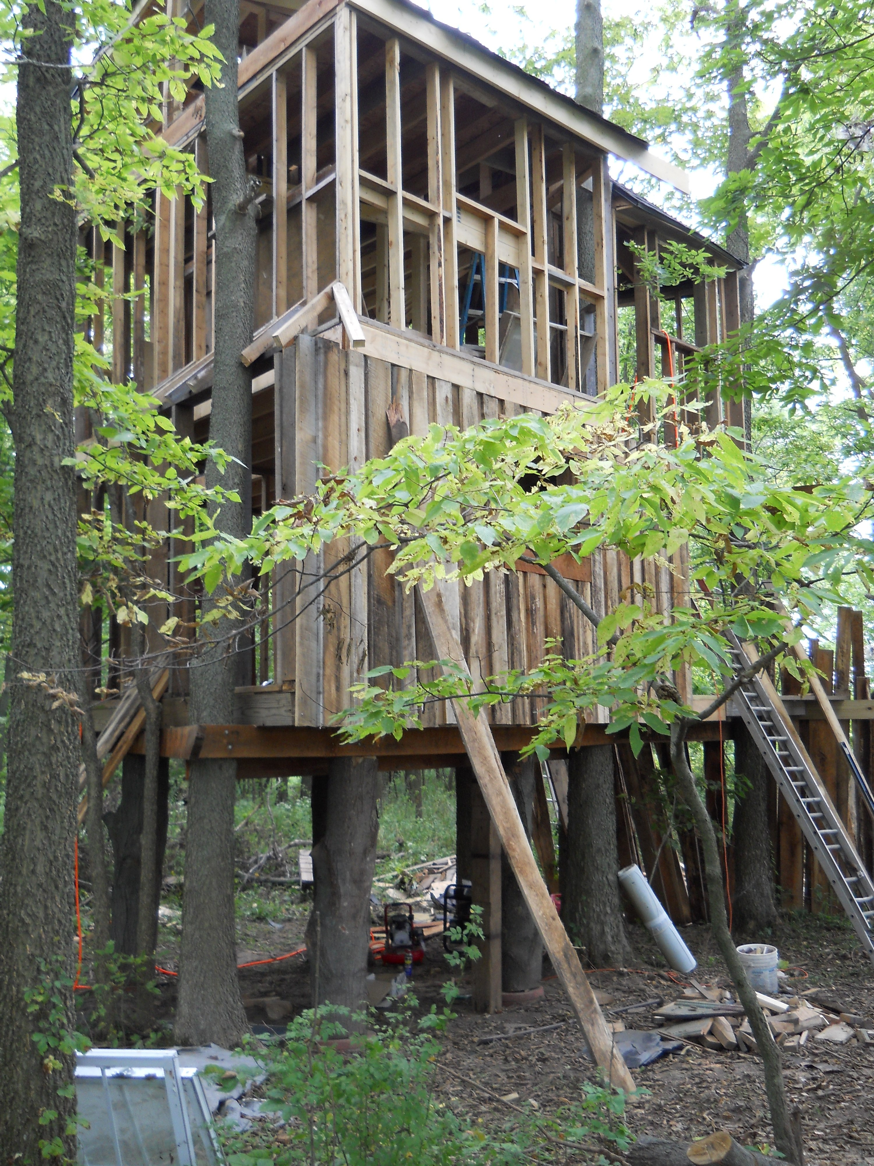 Treehouse Attachment to Trees