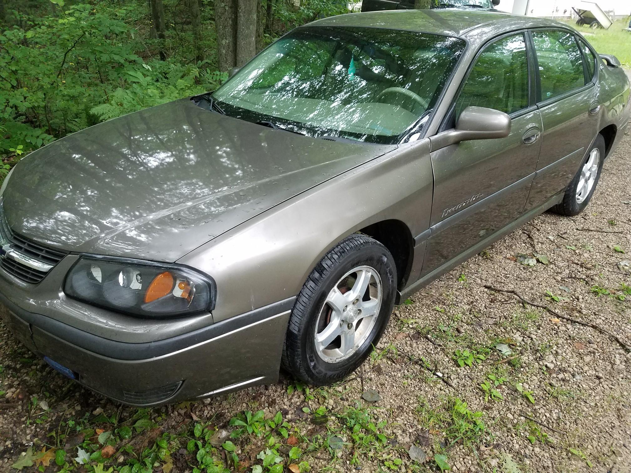 Name:  Impala pic 1.jpg Views: 119 Size:  1.10 MB